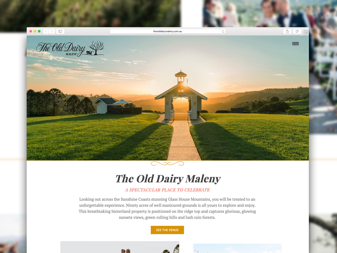 Old Dairy Maleny Website Redesign
